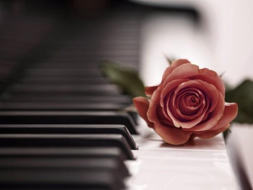 あなたのピアノサークルを紹介しませんか?